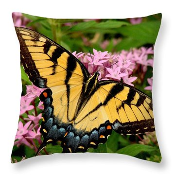 Painted Wings Throw Pillow by Rodney Lee Williams