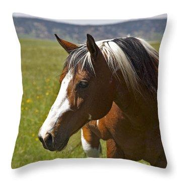 Paintin' Summer Throw Pillow
