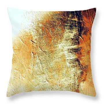 Painting With Shadows Throw Pillow by Jacqueline McReynolds