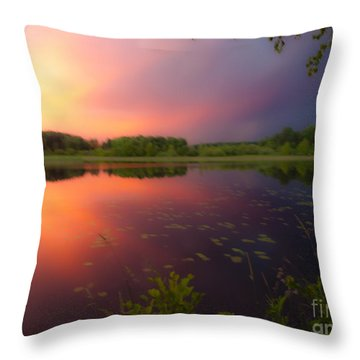 Painting With Stormy Light Throw Pillow