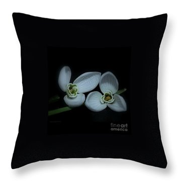 Throw Pillow featuring the photograph Spring  Is Coming by Marija Djedovic