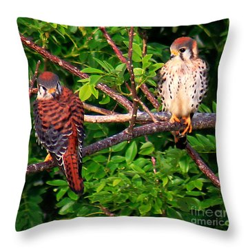 Caribbean Falcons Throw Pillow