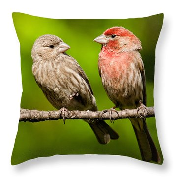 Pair Of House Finches In A Tree Throw Pillow by Jeff Goulden
