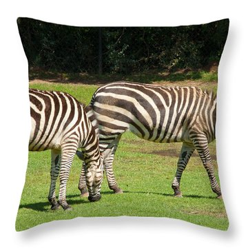 Throw Pillow featuring the photograph Pair Of Zebras by Charles Beeler