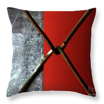 Throw Pillow featuring the photograph Paired by Newel Hunter