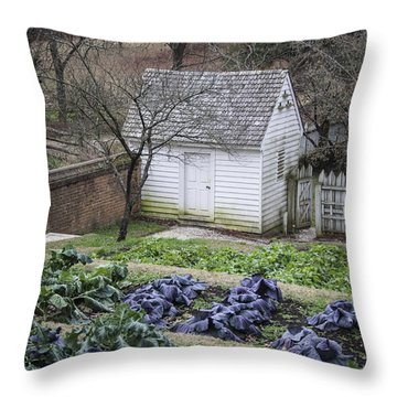 Palace Kitchen Winter Garden Throw Pillow