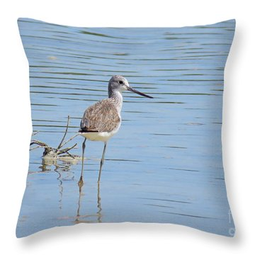 Palawan Shore Bird Throw Pillow