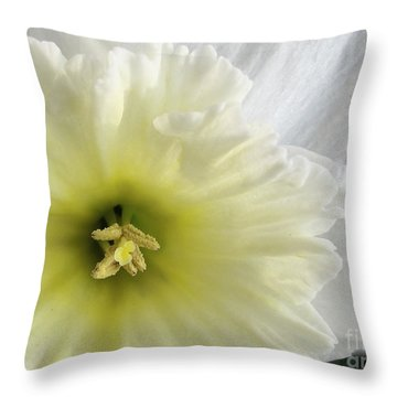 Throw Pillow featuring the photograph Pale Beauty by Arlene Carmel