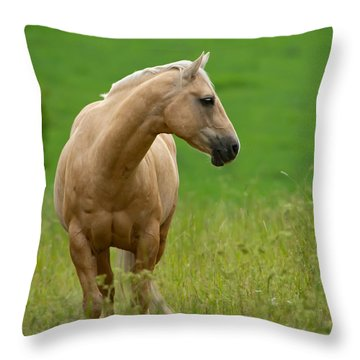 Pale Brown Horse Throw Pillow