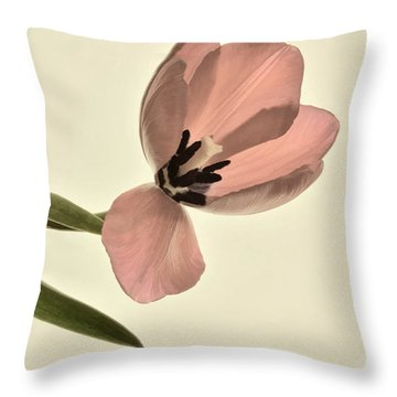Pale Pink Tulip Throw Pillow