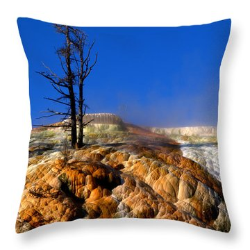Palette Spring Steam Throw Pillow by Brian Harig