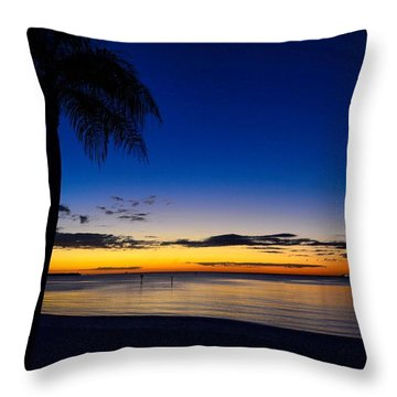 Palm After The Sun Is Gone Throw Pillow by Pamela Blizzard