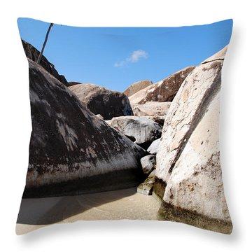 Palm At The Baths Virgin Islands Throw Pillow