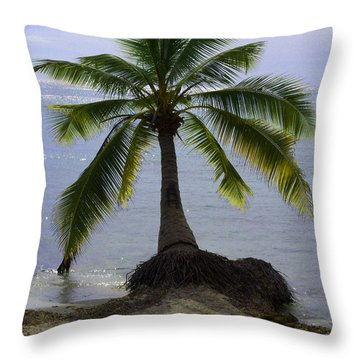 Palm At The Edge Of The Sea Number Two Throw Pillow by Heather Kirk