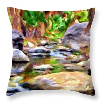 Palm Canyon Trail Throw Pillow by Michael Pickett