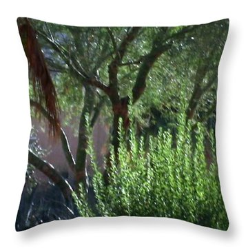 Throw Pillow featuring the photograph Palm Desert Museum Of Art by Sherri  Of Palm Springs