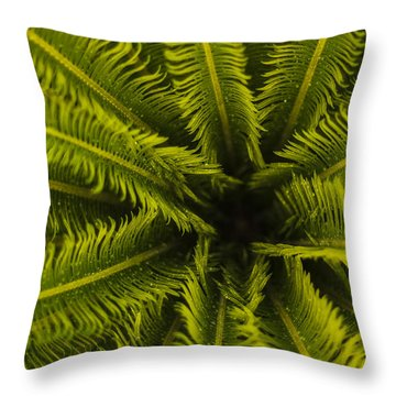 Throw Pillow featuring the photograph Palm Fronds by Amber Kresge