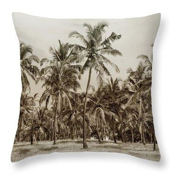Palm Grove Throw Pillow