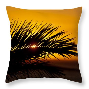 Palm Leaf In Sunset Throw Pillow