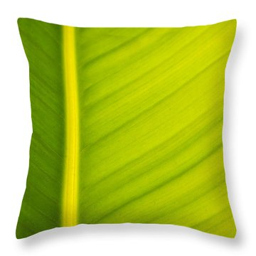 Palm Leaf Macro Abstract Throw Pillow by Adam Romanowicz