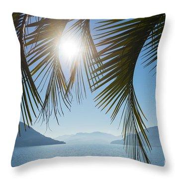 Palm Leaf Throw Pillow by Mats Silvan