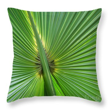 Throw Pillow featuring the photograph Palm Love by Roselynne Broussard