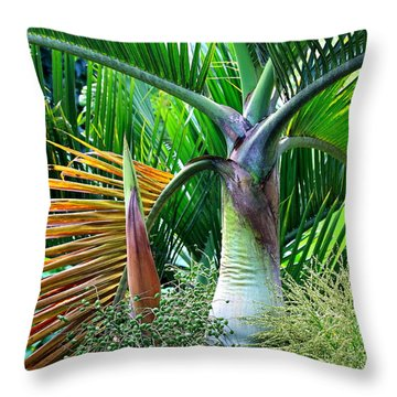 Palm Tree Inflorescence In The Rainforest  Throw Pillow by Karon Melillo DeVega