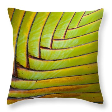 Palm Tree Leafs Throw Pillow by Sebastian Musial