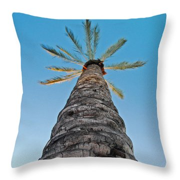 Throw Pillow featuring the photograph Palm Tree Looking Up by Maggy Marsh