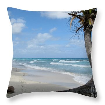 Palm Tree On The Beach Throw Pillow
