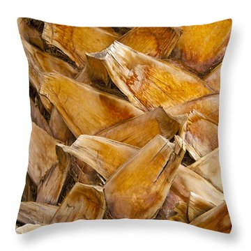 Palm Tree Trunk Detail Throw Pillow by Bob Phillips
