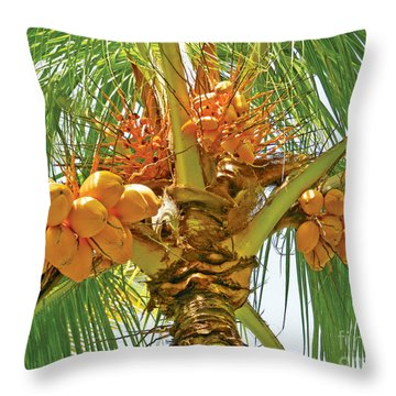 Palm Tree With Coconuts Throw Pillow