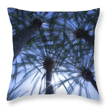 Throw Pillow featuring the photograph Palm Trees In The Sun by Jerry Cowart
