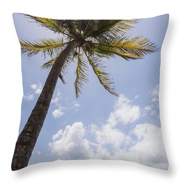 Throw Pillow featuring the photograph Palms Trees Along Luquillo Beach In Puerto Rico by Bryan Mullennix