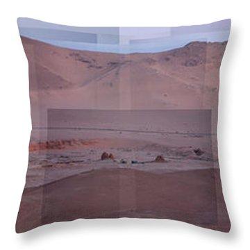Palmyra Syria Valley Of The Tombs Throw Pillow