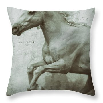 Palomino Beauty Throw Pillow