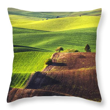Palouse In Contrast Throw Pillow