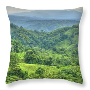 Panama Landscape Throw Pillow by Heiko Koehrer-Wagner