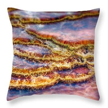Pancakes Hot Springs Throw Pillow
