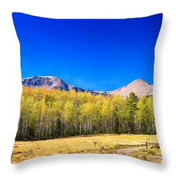 Panorama Autumn Bonanza Throw Pillow by James BO  Insogna