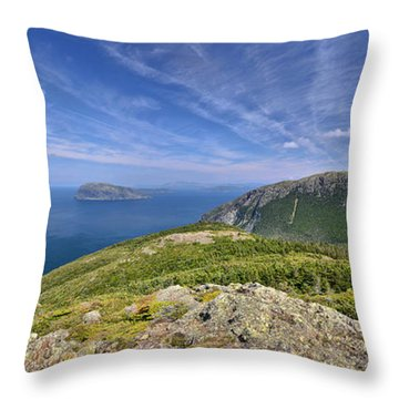 Panorama Of Grosvenor Island And The Outer Bay Of Islands Throw Pillow