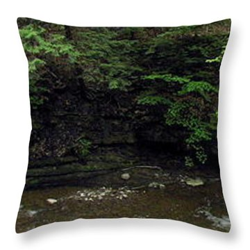 Panorama Of Wolf Creek At Letchworth State Park Throw Pillow by Rose Santuci-Sofranko