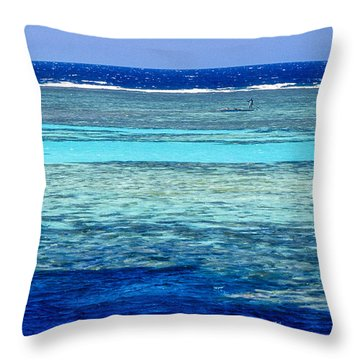 Panorama Reef Throw Pillow