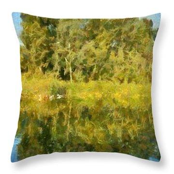 Panoramic Painting Of Ducks Lake Throw Pillow by George Atsametakis