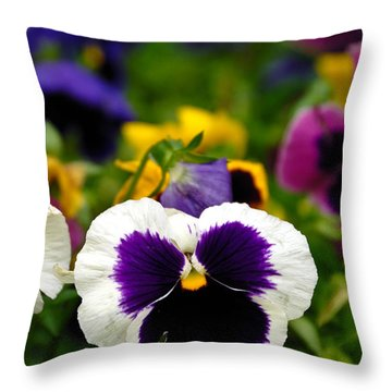 Pansies Throw Pillow by Amy Cicconi