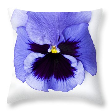 Pansy Face Throw Pillow by Anne Gilbert