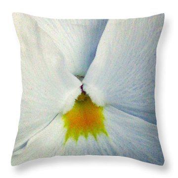 Pansy Flower 19 Throw Pillow by Pamela Critchlow