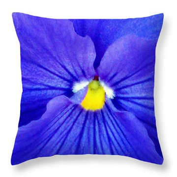 Pansy Flower 37 Throw Pillow by Pamela Critchlow