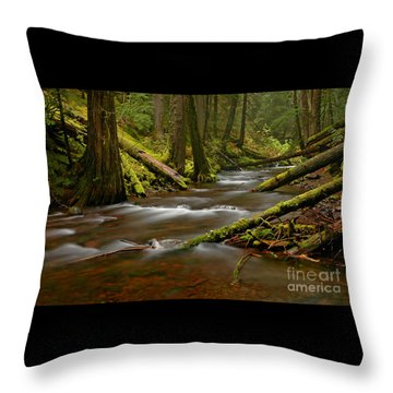 Throw Pillow featuring the photograph Panther Creek Landscape by Nick  Boren