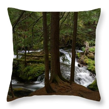 Panther Creek Panorama- Washington Throw Pillow